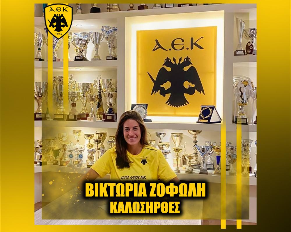 maketa_ANAKOINOSEIS_welcome_POLO_site_Zofoli